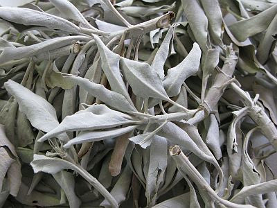 Bulk California White Sage