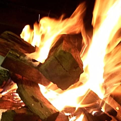 Combo / Fireplace (loose wood) - The Wood Gurus