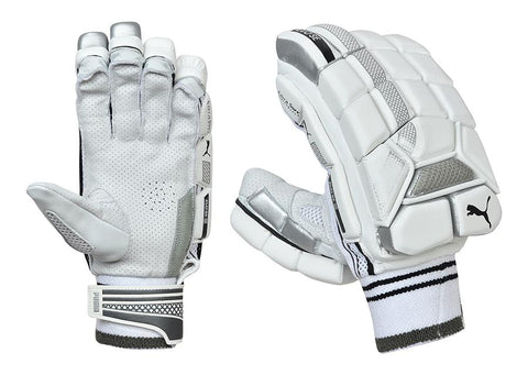 Puma Evo Special Edition (SE) Cricket Batting Gloves - Men