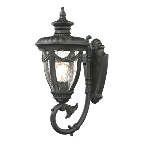 ELK Lighting  Anise Collection 1 light outdoor sconce in Textured Matte Black