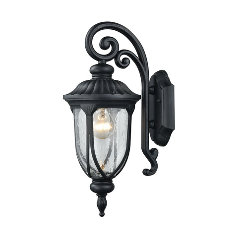 Derry Hill 1 Light Outdoor Wall Sconce In Matte Black