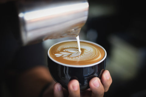 What is the best type of milk for coffee?