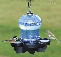 Bird Feeders and Water Supplies