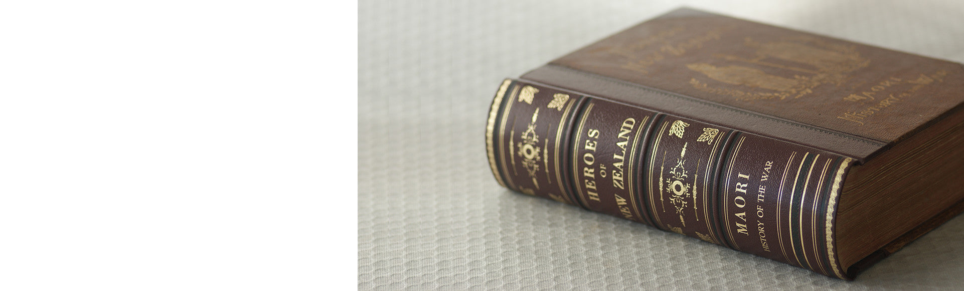 Heroes of New Zealand - Book Restoration by The Bookbindery, specially showing spine decoration