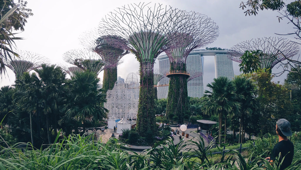 Malaysian Caves, Beaches of Singapore, and Stuck in China