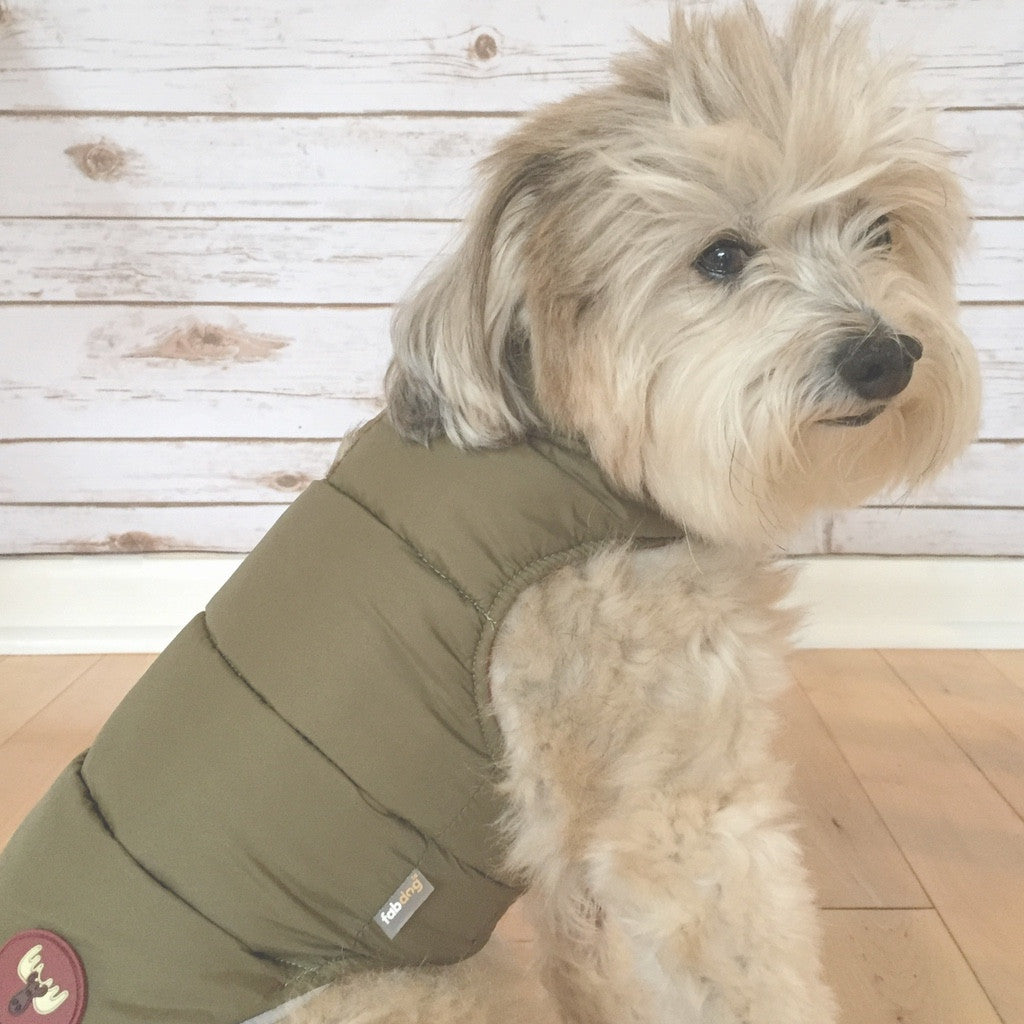 Olive Reversible Moose Puffer by FabDog @pawboutik