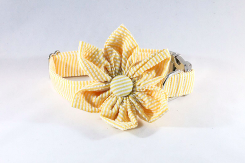 Preppy Yellow Seersucker Girl Dog Flower Bow Tie Collar