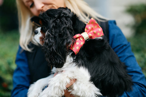 Valentine's Day Pink and Gold Polka Dot Dog Bow Tie Collar