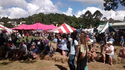 Maleny Wood Expo report