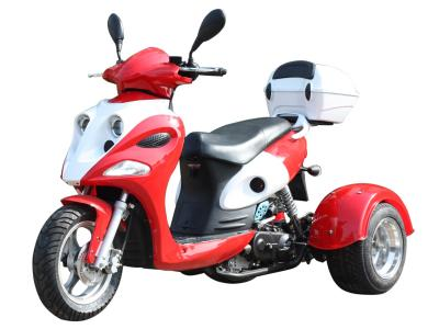 Ice Bear Ace 50cc Trike