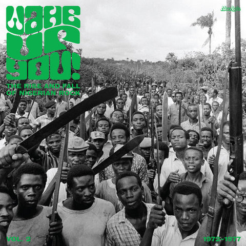 <b>Various </b><br><i>Wake Up You! The Rise And Fall of Nigerian Rock 1972 - 1977 Vol. 2</i>