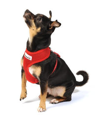 Doodlebone Red Padded Mesh Harness
