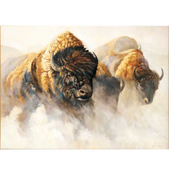 Phantoms of the Plains - Bison;  Wrapped Canvas by Grant Hacking - F362600469