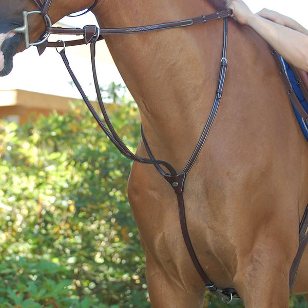 Quail Hollow Tack - Dy'on - Running Martingale