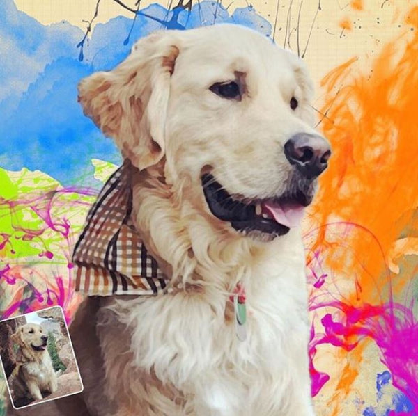 Custom Pet Art -  Paint Splatter Pet Full Color Style