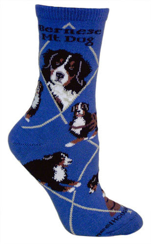 Bernese Mountain Dog on blue - Made in USA - Dog Socks