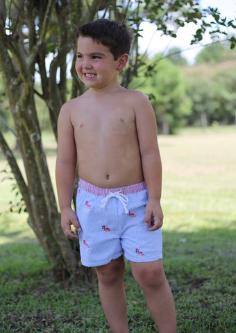 Boys Flamingo Embroidered Swim Suit