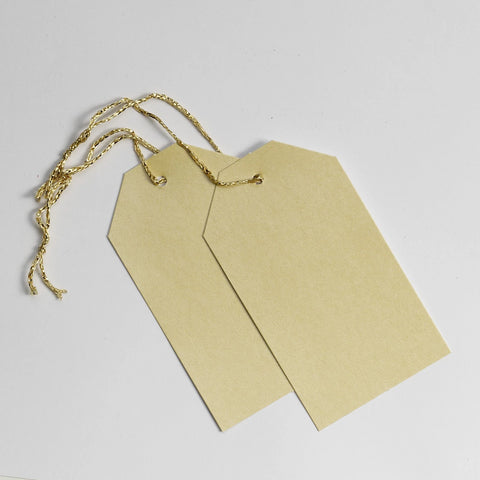 Luggage Pearl Cream Gift Tags (50)