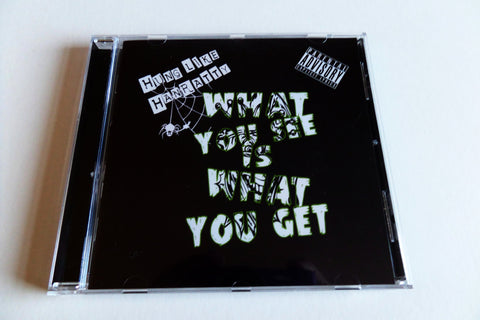 HUNG LIKE HANRATTY what you see is what you get CD - BACK IN STOCK - Savage Amusement