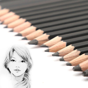 Best Quality 12/24Pcs 9H-14B Set Drawing Sketching Pencil Soft Standard Pencils - Goamiroo Store