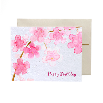 Cherry Blossom | Card