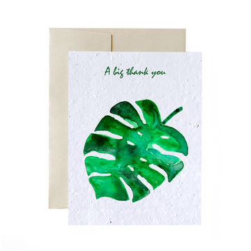Monstera | Card