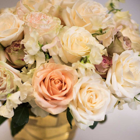 Champagne Rose Mix