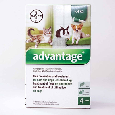 Bayer Advantage Spot-on Treatment For Small Dogs, Small Cats & Pet Rabbits  | UnitedPetWorld
