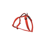 Red H-Harness