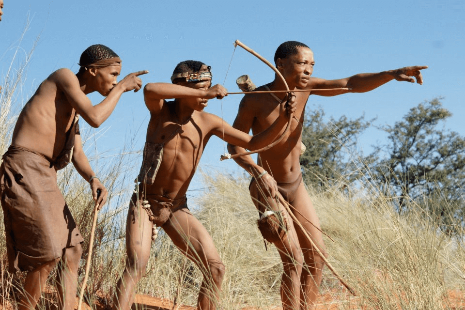 What Did the Bushmen Actually Eat?