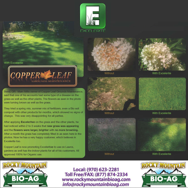 Bend Oregon Marc Mills Copper Leaf Excelerite on Landscapes and Turf Testimonial EXCELERITE Calcium Montmorillinite Clay Trace Elements and Minerals - Rocky Mountain Bio-Ag