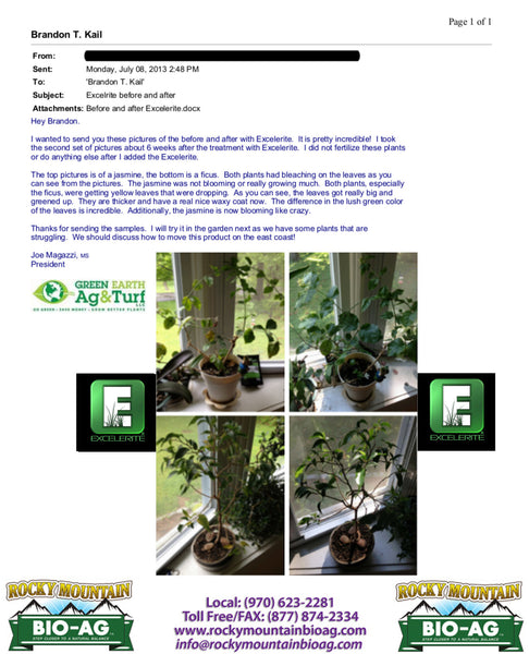 Green Earth Ag & Turf Jasmine and Ficus Testimonial EXCELERITE Calcium Montmorillinite Clay Trace Elements and Minerals - Rocky Mountain Bio-Ag
