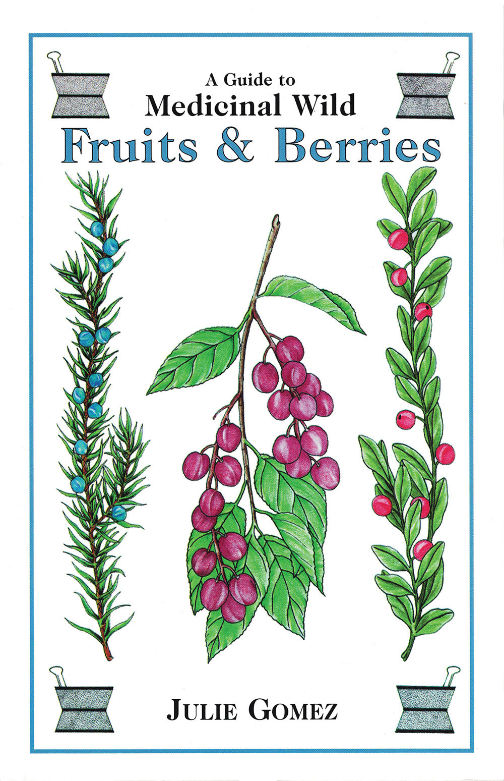 Guide to Medicinal Wild Fruits & Berries