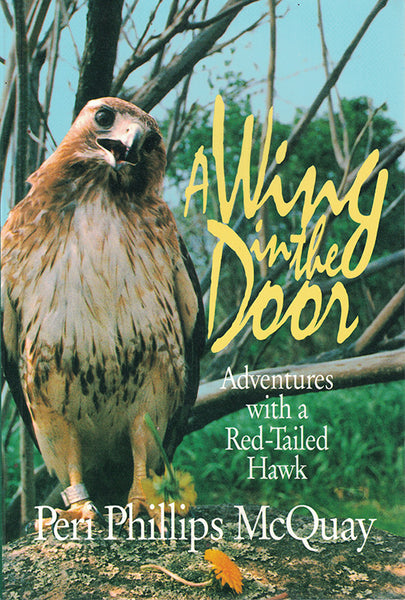 A Wing in the Door: adventures with a Red-tailed Hawk