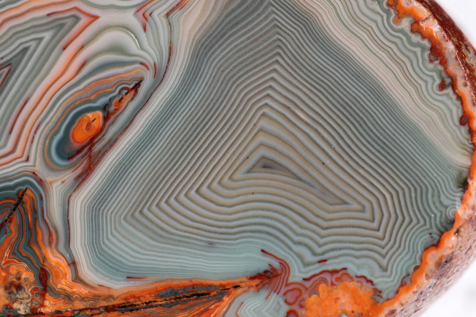 Agate example of fractal patterns in nature picture graphic image