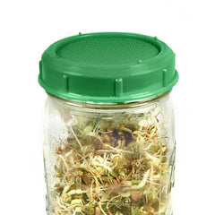 Mason Jar Sprouting Lid