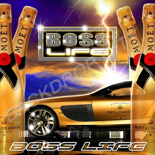 Boss Life 1 Computer Printed Backdrop - Backdrop City