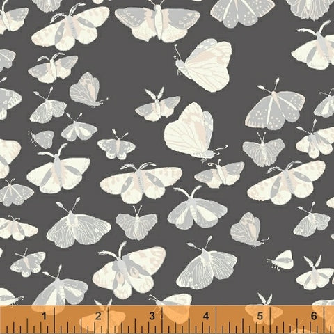 Windham Fabrics - Night Hike by Heather Givans - Dark Grey Night Flight
