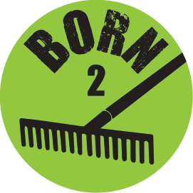 BORN 2 RAKE BAT KNOB DECAL
