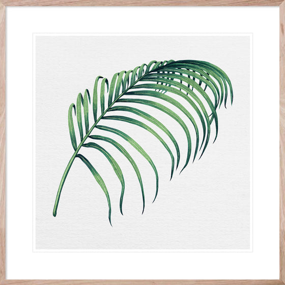 Hampton's Green Palm #3 * Coastal style, hand painted, interior wall art print
