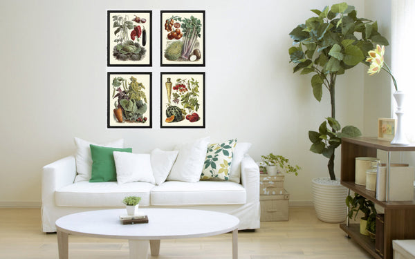 Botanical Vegetable Print Set of 4 Art  Redoute Antique Beautiful Eggplant Pumpkin Cabbage Corn Beets Kitchen Dining Room Wall Decor