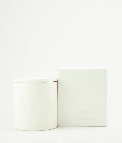 Mimosa soy wax candle in white porcelain pot