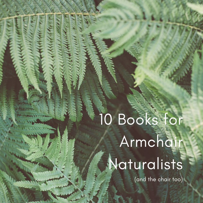 10 Best Nature Books with ferns