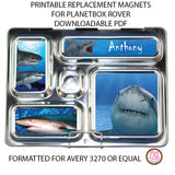 PlanetBox Rover Personalized Magnets - Sharks - Max & Otis Designs