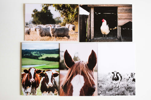 Country Greeting Card Pack