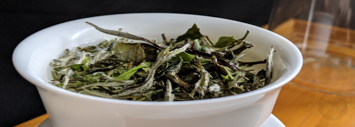 Many teas should not be rinsed, but a few styles can benefit from a quick initial rinse