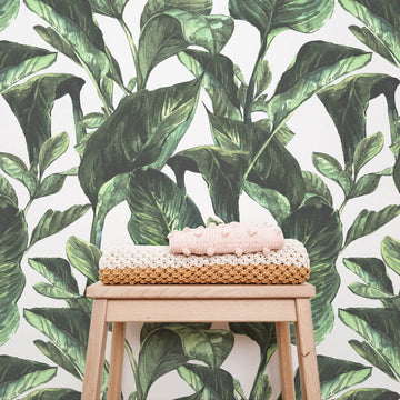 Botanical print removable wallpaper for kid's room interiors