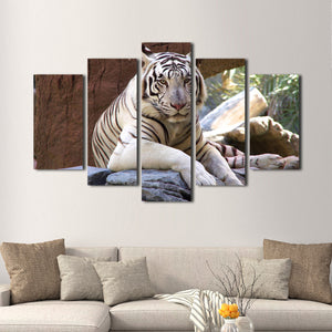White Tiger Multi Panel Canvas Wall Art - Tiger