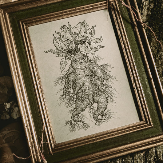 Witchy Plant Original Illustration - Framed