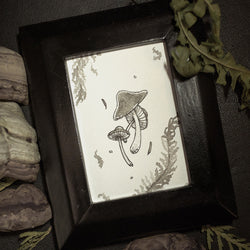 Foraging Original Illustration - Framed